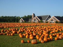 Pumpkin Patch Fayetteville Arkansas by Fuquay Varina United Methodist Church Pumpkin Patch I Love When