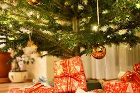 Which Christmas Tree Smells The Best Uk by How You Can Use Hairspray And Red Bull To Stop Your Christmas Tree