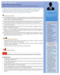 Visual Resume Sample For Senior Management Executive Leadership