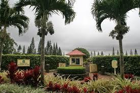 File Pineapple Garden Maze Wikimedia mons