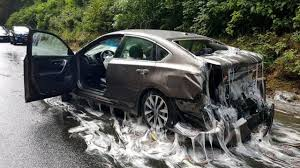 100 Fugu Truck Slimy Fish Cover Oregon Highway After Accident