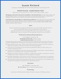 49 Unique Sample Resume Government Jobs