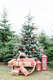 Clovis Christmas Tree Lane Hours by 12 Best Camping Mini Sessions Inspiration Images On Pinterest