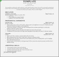 Casino Cashier Resume Examples Fresh Resumes For Cashiers Sample