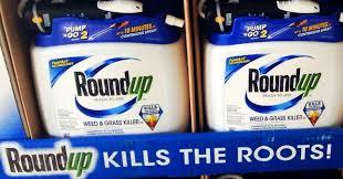 Monsantos Weed Killer Roundup