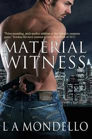 Material Witness Heroes Of Providence 1 By LA Mondello