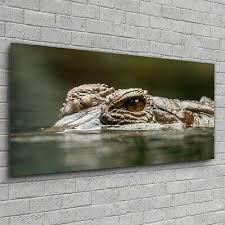 das krokodil und sein nilpferd glasbild set 2 glasbilder