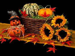 Pumpkin Patch Spring Tx by What U0027s Happening This Weekend Fall Fun Events In Houston