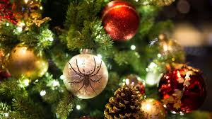 Christmas Tree Has Aphids by Did Christmas Tree Bugs Hitch A Ride Into Your House
