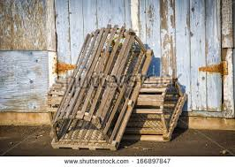 Decorative Lobster Trap Uk by Lobster In A Pot Stock Images Royalty Free Images U0026 Vectors
