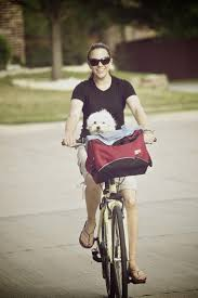 Snoozer Cozy Cave Pet Bed by 15 Best Snoozer Bicycle Seats Images On Pinterest Bike Seat