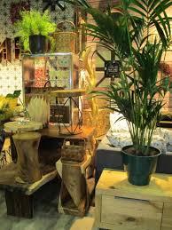 zahlreiche deko ideen durch pflanzen im wohnzimmer auf regal