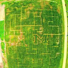 Pumpkin Patch Waco Tx 2015 by Texas A U0026m Agronomy Club Creates Aggie Themed Corn Maze Local
