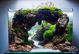 100 Aquascape Ideas | Cave, Aquariums And Photography An Inrmediate Guide To Aquascaping Aquaec Tropical Fish Most Beautiful Aquascapes Undwater Landscapes Youtube 30 Most Amazing Aquascapes And Planted Fish Tank Ever 1 The Beautiful Luxury Aquaria Creating With Earth Water Photo Planted Axolotl Aquascape Tank Caudataorg 20 Of Places On Planet This Is Why You Can Forum Favourites By Very Nice Triangular Appartment Nano Cube Aquascape Nature Aquarium Aquascaping Enrico A Collection Of Kristelvdakker Pearltrees