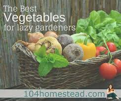 The Best Ve ables for Lazy Gardeners