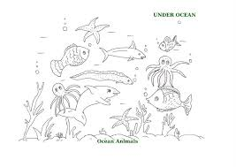 Ocean Animals Printable Coloring Pages For Kids 18