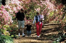 Callaway Gardens Hosts Gardening Weekend March 21 24 — The Travel