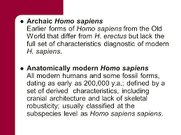 chapter 10 neanderthals and other archaic sapiens key terms