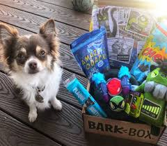 The Best Dog Subscription Boxes Filled With Toys & Treats Barkbox Coupons Archives Subscription Box Mom Archive Black Friday Coupon Free Bonus Toy Every Month With Longer How Is Barkbox Delivered Birkcraft2s Blog The Best Dog Boxes Filled Toys Treats New First For Only 5 My Supersized 90s Throwback Electronic Bundle Barkbox Groupon 2014 Related Keywords Suggestions Page 36 Of 72 Savvy 15 Monthly Urban Tastebud Review May 2013 Code Love Compressionsale Com Discount Coupon Code Zoo Discounts