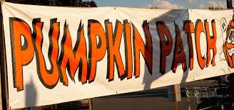 Pumpkin Patch Reno by Happy Halloween Windy Pinwheel