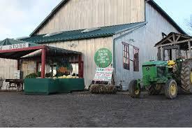 Canby Pumpkin Patch Train by Tricounty Farm Fresh
