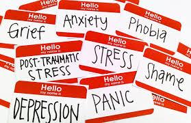 100 Ockert Psychological Disorders Jansen V Legal Aid South