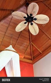 5 Palm Leaf Ceiling Fan Blades by 52 Antique Brass Maubay Indoor Ceiling Fan W Tropical Leaf Blades