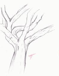 Best Photos Of Tree Trunk Coloring Page