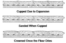 Buckled Wood Floor Water by Hardwood Flooring Drying