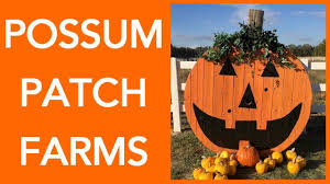 Pumpkin Farm Illinois Best by Possum Patch Farms Pumpkin Patch In Olney Il Barrel Train Hay