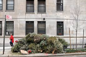 Christmas Tree Disposal New York City by Windblown Christmas Tree Knocks Broadway Actress Unconscious On