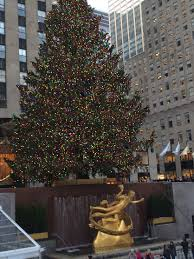 Rockefeller Center Christmas Tree Facts 2014 by Nyc My Second Plan A