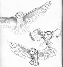 Barn Owl In Flight Tattoo Sketch Photo - 1 2017: Real Photo ... Pencil Drawing Of Old Barn And Silo Stock Photography Image Sketches Barns Images The Best Red Store Opens Again For Season Oak Hill Farmer Gallery Of Manson Skb Architects 26 Owl Sketch By Mostlyharmful On Deviantart Sketch Cliparts Zone Pen Drawings Old Barns Acrylic Yahoo Search Results 15 Original Hand Drawn Farm Collection Vector Westside Rd Urban Sketchers North Bay Top 10 For Design Sketches Ralph Parker Artist