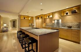 Home Designs Contemporary Kitchen Lighting Seattle Penthouse