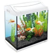 aquarium achat vente aquarium pas cher cdiscount