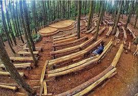 Hutan Pinus Imogiri Kini Sediakan Panggung Kesenian