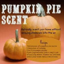 Preparing Fresh Pumpkin For Pies scent your home with the smell of pumpkin pie without polluting