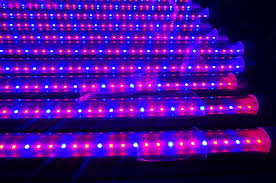 agriculture product t8 led grow light plant grow lights lowes