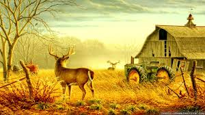 Country Wallpaper 3