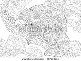 Stylized Raccoon Animal Sitting On A Tree Branch Freehand Sketch For Adult Anti Stress Coloring