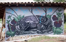 Mazatl In Honduras Via