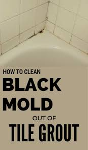 Unsanded Tile Grout Chalkboard by Best 25 Tile Grout Ideas On Pinterest Clean Grout Shower Grout