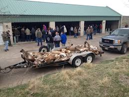 Prime Time Auctions - SOLD! Hide, Fur, Antlers & Taxidermy Auction Photos Opening Day Of Wyomings Shed Hunting Season Outdoor Life Holiday Lighted Car Antlers Pep Boys Youtube Wip Beta Released Beamng Antlers The Cairngorm Reindeer Herd Dump Truck Full Image Photo Bigstock Atoka Ok Official Website Meg With Flowers By Myrtle Bracken Vw Kombi Worlds Best And Truck Flickr Hive Mind Amazoncom Bluegrass Decals Show Me Your Rack Deer May 2009 Bari Patch My Antler Base Shift Knob Elk Pinterest Cars Buck You Vinyl Window Decal Nature Woods Redneck