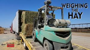 Weighing The Hay - YouTube Remuda Trucking We Always Go The Extra Mile Move Freight Regulations And Fuel Costs Are Challenges Moving Drivers Into More Alwaystrucking Dad Dafsuperspacecab Us Car Carriers Driving An Open Highway Icl Systems Nashville Company 931 7385065 Cbtrucking Allways Transit Inc Bloomer Chamber Of Commerce Portland Container Drayage Service Miramontes Family San Diego Small Business Development Why Bobtail Liability Coverage Is Important Genesee General Heres Our First Look At Uber Ubers Longhaul Trucking Haulin Auto Transport Home Facebook