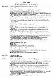 Marketing Director Resume Examples Of Resumes