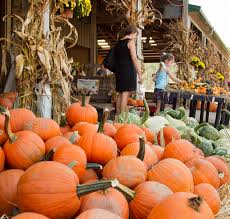 Pumpkin Patch Nj Monmouth County by What U0027s In Season From The Garden State Orange Is The New Black