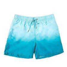 100 Coco Republic Sale Mens Gradient Board Shorts In Green