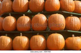 Pumpkin Festival Ohio by Central Ohio Stock Photos U0026 Central Ohio Stock Images Alamy