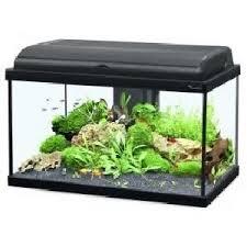 aquarium 50 litres achat vente aquarium 50 litres pas cher