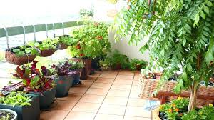 Balcony Garden Idea Latest Charming Designs Ideas Small Terrace Design Intended For